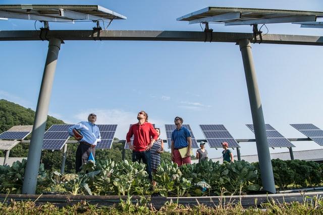 Jak można uzyskać dotacje na instalacje z rynku odnawialnej energii?